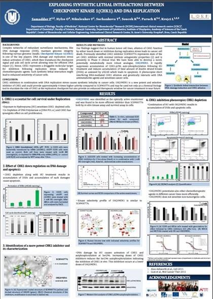 Ukázka 1: Tisk vědeckých posterů
