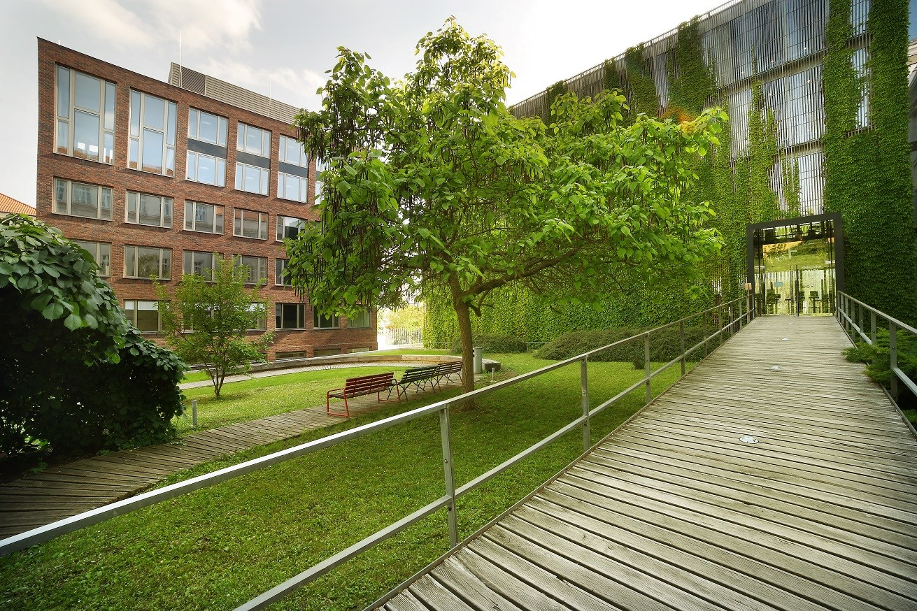 Faculty of Arts, Masaryk University