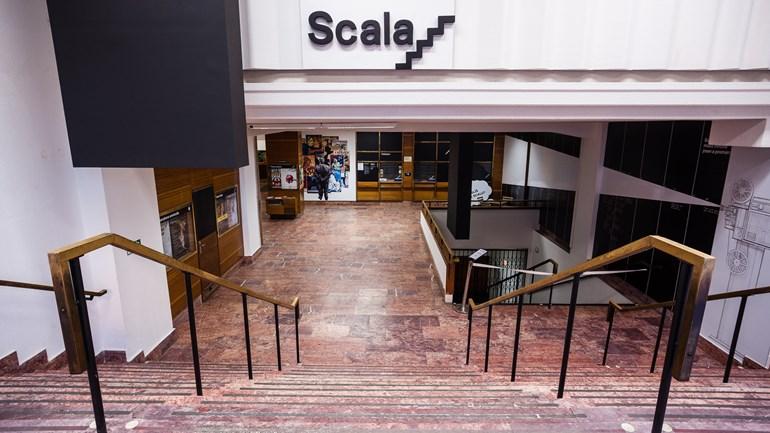 Univerzitní kino Scala - vstup