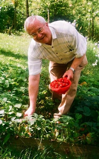 Vladimír Smékal sbírá jahody na chalupě, kde rád tráví volný čas s rodinou. Foto: archiv Vladimíra Smékala
