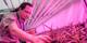 Zpracováváme expertízy pro výzkum vegetace a biotopů