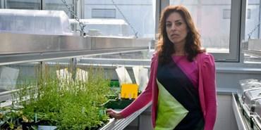 Argentinská vědkyně zkoumá v Ceitecu odolnost rostlin vůči stresu