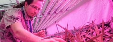 Přírodovědecká fakulta je evropským centrem pro výzkum vegetace a biotopů