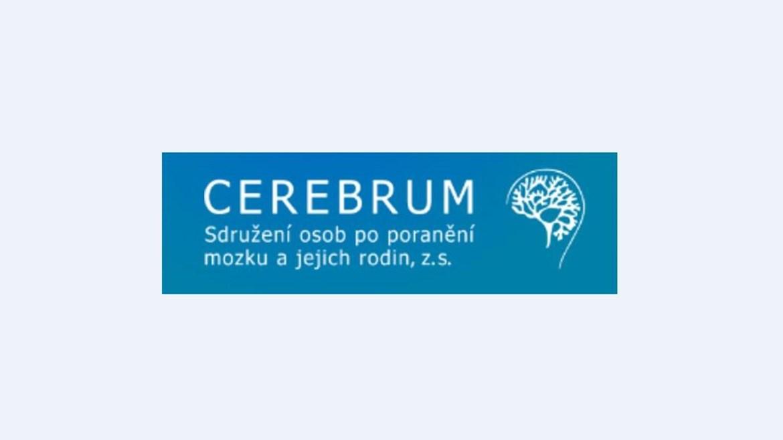 Nabízíme neurorehabilitaci a kognitivní trénink, podporujeme CEREBRUM