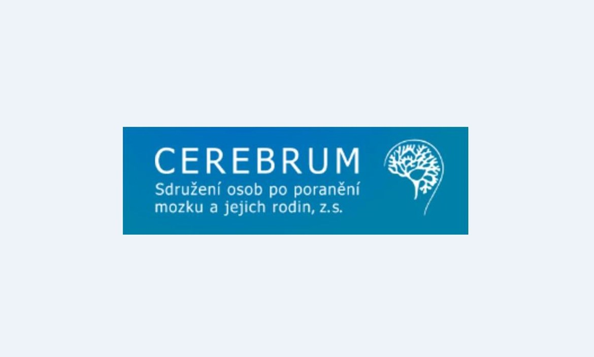 Neurorehabilitation and cognitive training, cooperation with CEREBRUM