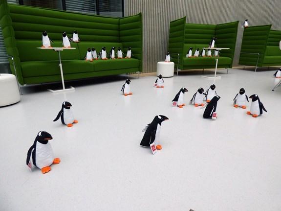 Na blížící se akci upozorňují plyšoví tučňáci umístění na různých částech Brna (Foto: Polární výzkum na MU)