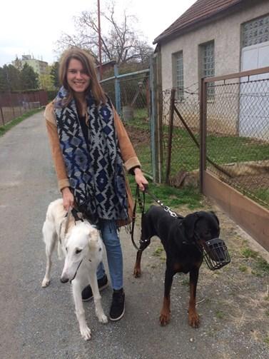 Když má chvíli volna, chodí Lenka Hrbková na procházky se psy. Foto: archiv Lenky Hrbkové