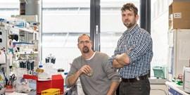 Odborníci už ví, jak fungují opraváři DNA