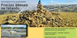 Fosilní záznam na Islandu