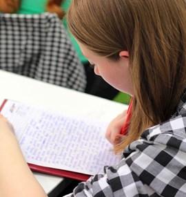 Kariérová adaptabilita žáků středních škol