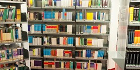 Library loans in the fallback mode