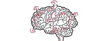Seminář ekonomických mozků