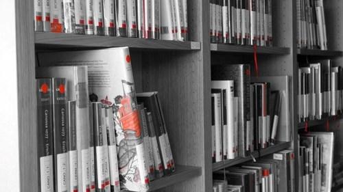 knihovna_7.jpg