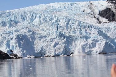 Hroutící se ledovec zachytil profesor Pavelka na Aljašce. Foto: archiv Jiřího Pavelky