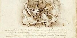 Afektivní odpověď na vizuální umění: propojení uměnovědného a neurovědního pohledu