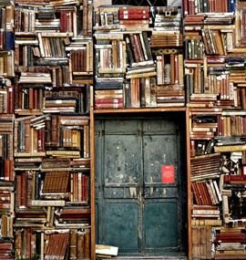 Knihovnictví a literatura v kulturním kontextu
