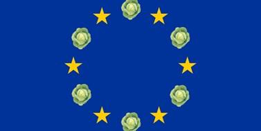 O karamelkách, zelí a Evropské unii
