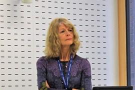 Kari Smith: EDiTE Supervision Workshop