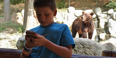 Zoo Visitor App