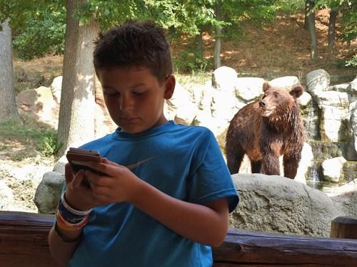 Zoo_foto (3).JPG