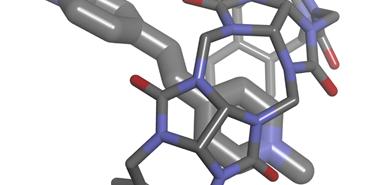 Acyclic glycoluril oligomers