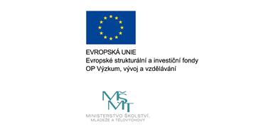 Rozvoj lidských zdrojů a dalších strategických oblastí pro podporu výzkumu na MU (HR4MUII)