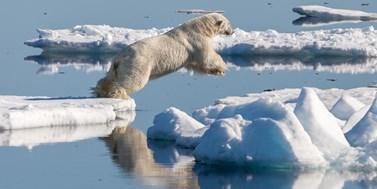 Globální oteplování – jak to vidí vyučující práva životního prostředí?