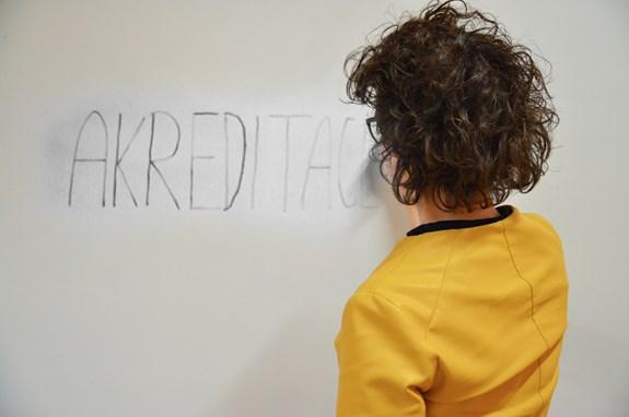 Budoucí studenti budou vybírat z více různorodých studijních plánů. Foto: Eva Bartáková