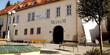 Výběrové řízení: Průvodce a pokladní, Muzeum Šlapanice