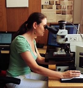 Traseologická laboratoř