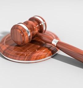 Licence a autorská práva