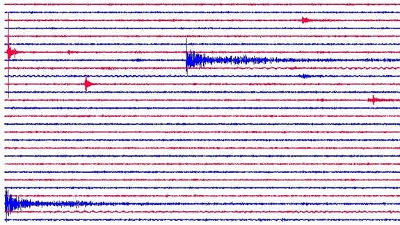 denní seismogramy