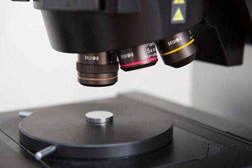 ceplant-confocal_laser_microscopy2.jpg