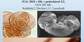 Příspěvek palynologie ke geologickým a archeologickým interpretacím