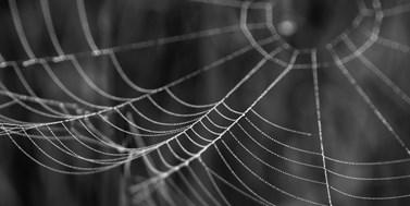 Deep web a dark web. Ponořte se do hlubin internetu
