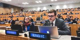 Z Brna do New Yorku. Student mezinárodních vztahů je mládežnickým delegátem OSN
