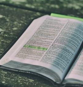 "GA ČR P401/12/G168  CENTRUM EXCELENCE ""HISTORIE A INTERPRETACE BIBLE"" (2012–2018)."