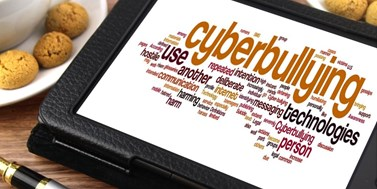 Kyberšikana a griefing. Když jsou z hračky plačky