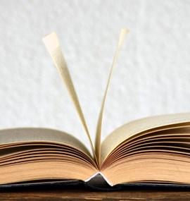 Mgr. Ester Nováková, Ph.D. - Český historický román v období protektorátu
