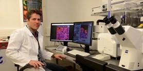 Využití embryonálních kmenových buněk je na dosah