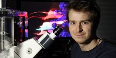 Univerzita podpořila hraniční výzkum evoluce enzymů a regenerace zubů