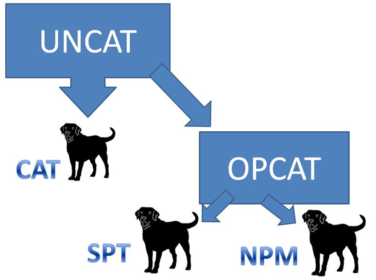 Systém hlídacích psů podle UNCAT a OPCAT. Grafika Pavel Doubek