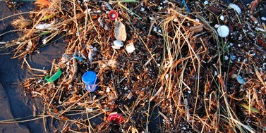 Krok k době poplastové: Směrnice o zákazu jednorázových plastů schválena