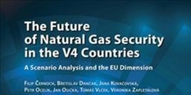 The Future of Natural Gas Security in V4 Countries