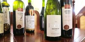 Vítězové fakultního vína ESF MU pro akademický rok 2019/2020