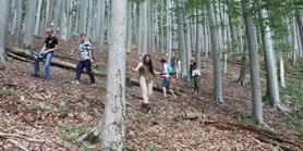 Reportáž: LESEM – deset dní k přírodě odpovědně žít snesem
