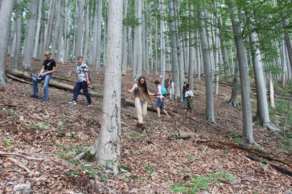 Podívat se do prosperujícího lesa s certifikací FSC v Moravském krasu bylo jedním ze středobodů letní školy environmentalistiky LESEM. Foto: Marie Drahoňovská