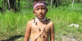Brněnská romanistika podporuje Amazonii