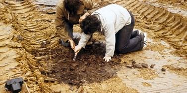 Nabídka brigády: Archeologické dohledy v Muzeu Boskovicka