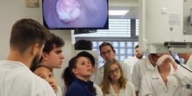 Kurz klinické anatomie pánve se zaměřením na chirurgii rekta